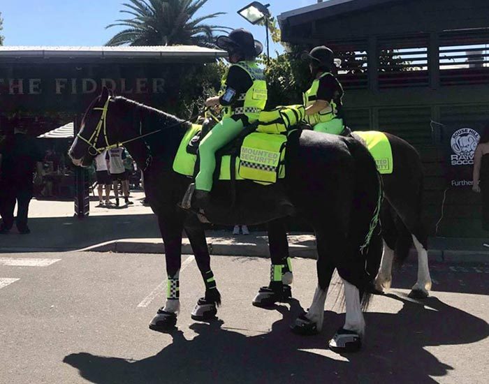 mounted-security patrols
